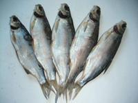 Вяленая рыба